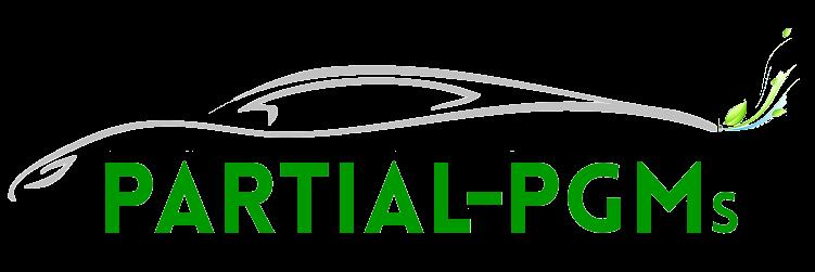 Logo_Partial_PGMs_DEF_trasp